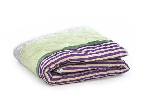 Легкое одеяло Cleo Экофайбер 200/0607-EEP