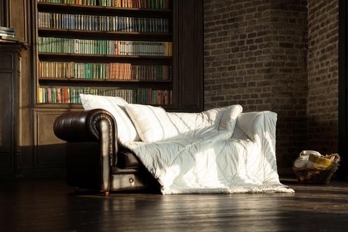 Легкое стеганое одеяло 200х220 см Camel Grass